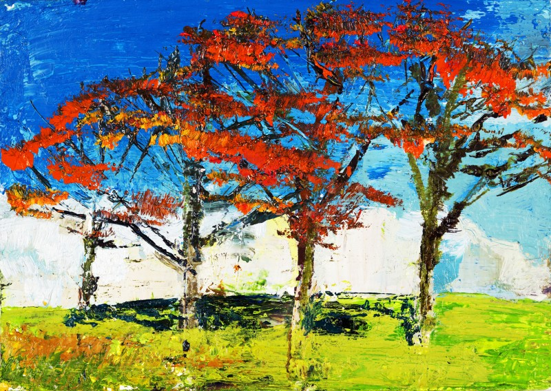 Flame Trees, Oil on prepared card, 10.5 x 14.5cm, 2011