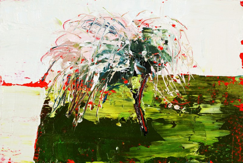 Pink Willow, Oil on prepared card, 10.5 x 14.5cm, 2011