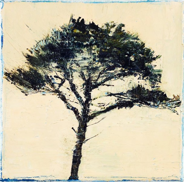Peach Pine, 18 x 18cm, Oil on canvas, 2009