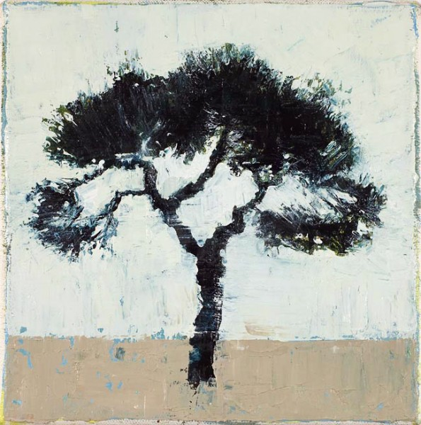Strange Tree, 18 x 18cm, Oil on canvas, 2009