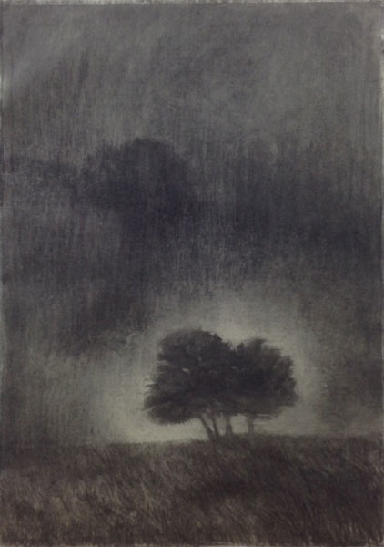 Sweet Night, 84 x 60 cm, Charcoal on Paper, 2015