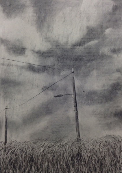 Tangle Reach, 84 x 60 cm, Charcoal on Paper, 2015